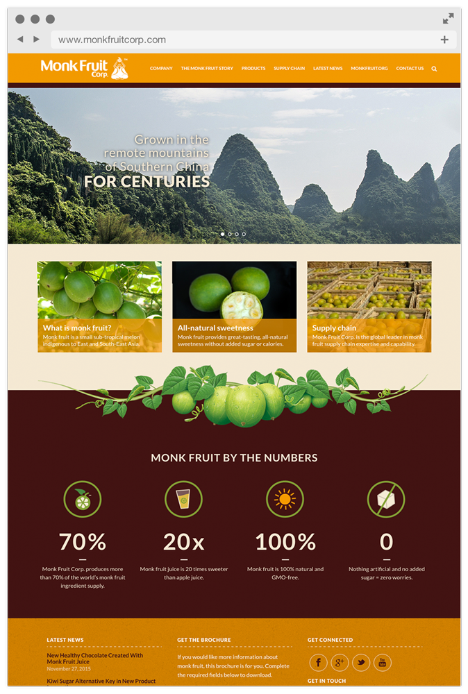 Monkfruit_WebMockup7