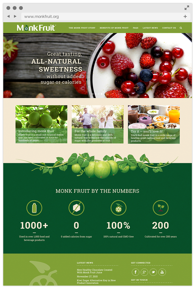 Monkfruit_WebMockup8